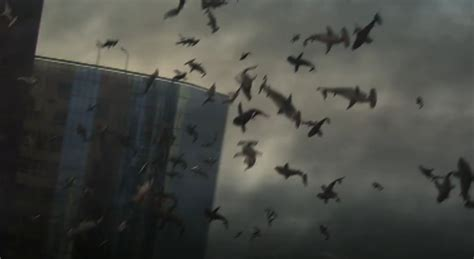 6 Things 'Sharknado' Got Right About L