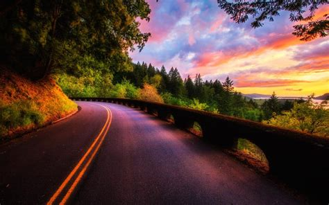Beautiful sunset scenery, forest, trees, road, clouds